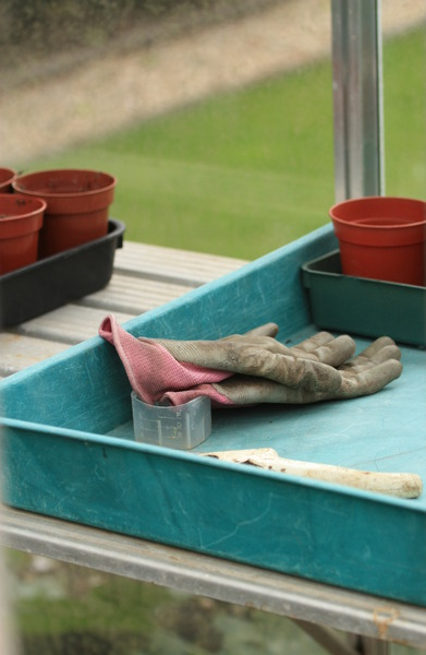Stock de fotos gratis guantes de jardiner a for Imagenes de jardineria gratis