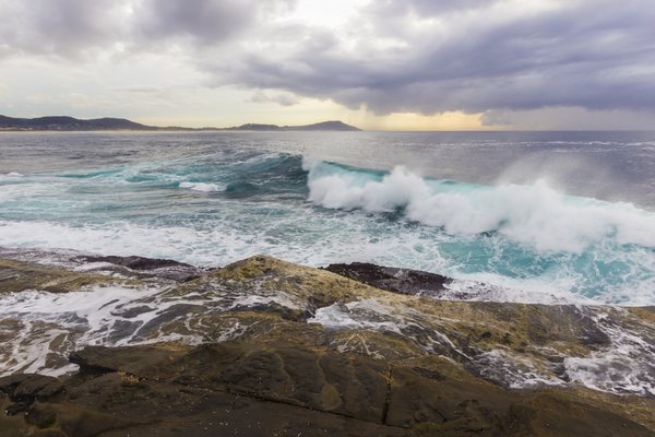 Waves: Terrigal Haven, NSW 16th August 2014