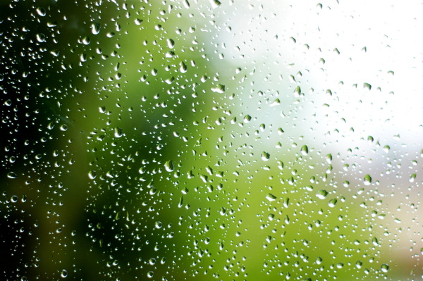 raindrops: Raindrops on a window pane.