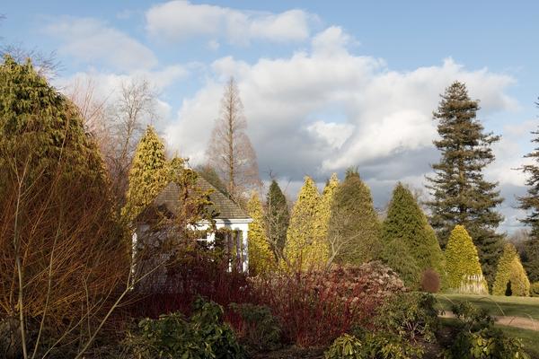 Stock de fotos gratis jard n de invierno micromoth for Jardines de invierno fotos