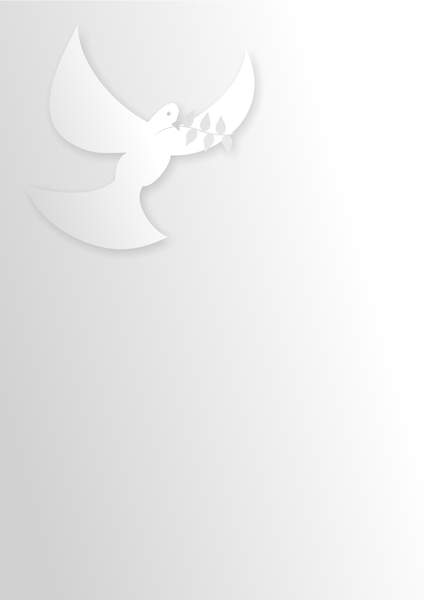 White Dove: White dove paper background.